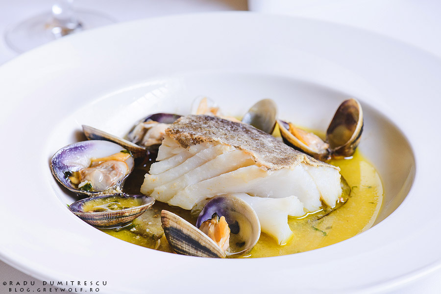 fotografie culinara - cod cu scoici - restaurant Roberto's - Athenee Palace Hilton - foto Radu Dumitrescu