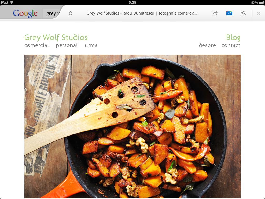 Noul Google Search pentru iPad - Grey Wolf Studios