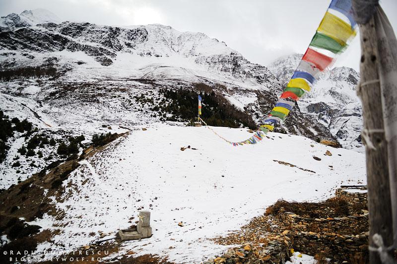 Imagine cu steaguri de rugăciune nepaleze, într-o așezare sezonieră de deasupra orașului Manang, la 4200m altitudine.